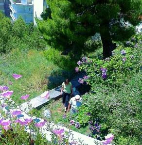 Inspektion av trädgården och dess pågående arbeten....