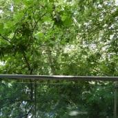 Balkong 1
